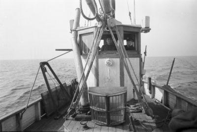 Kuter rybacki – sterówka