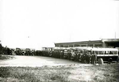 Pracownicy i autobusy Miejskiego Towarzystwa Komunikacyjnego w Gdyni