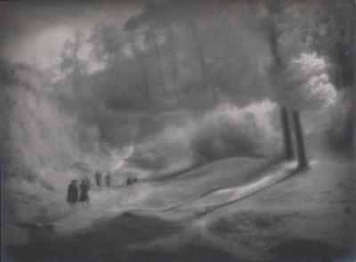 Bez tytułu (Pejzaż – spacer w lesie)