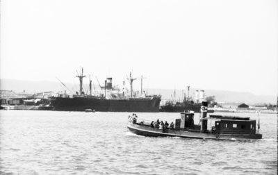 Port gdyński- statki