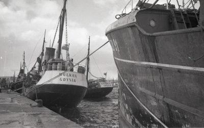 Port rybacki w Gdyni, Dalmor