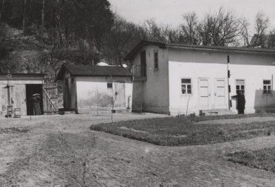 Fotografia budynków zapleczowych na posesji przy ulicy Orłowskiej 8